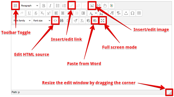The text editor with key features